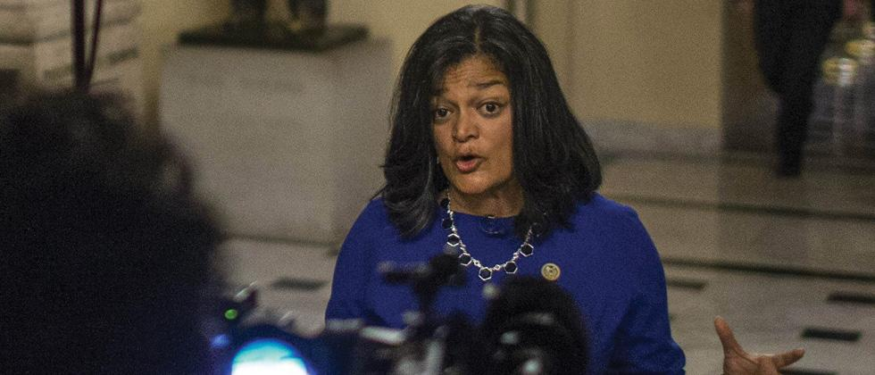 Indian-American Congresswoman arrested in Washington anti-immigration protest