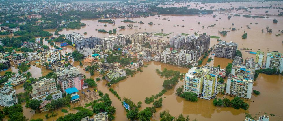 Death toll reaches 43 in Pune Div