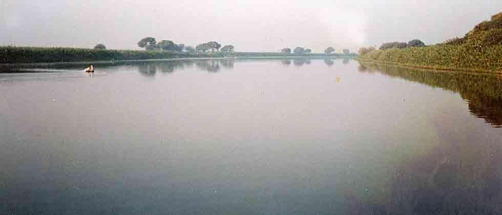Free rivers of encroachments, demand activists from city