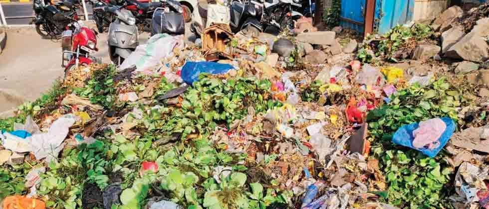 NGOs conduct cleanliness drive at Pavana river bank