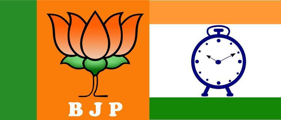 Bypoll has become cut-throat contest between NCP, BJP