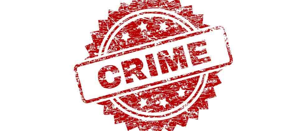 Crime branch arrests man for possessing star Tortoise