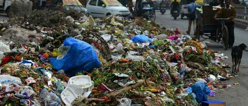 Panel approves e-rickshaws for collection of garbage