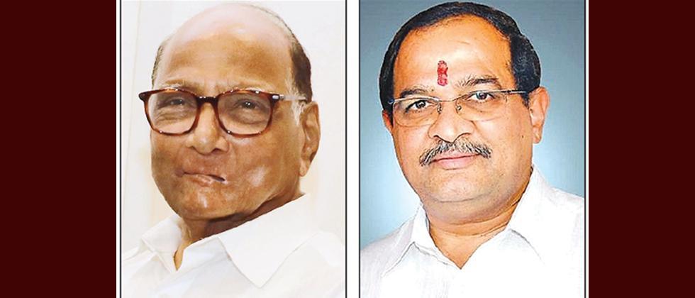 LokSabha 2019: Rift between NCP and Vikhe-Patil widens