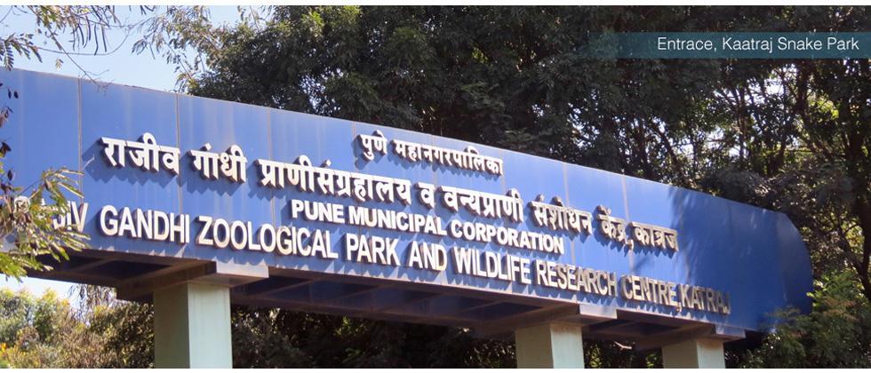Rajiv Gandhi Zoological Park celebrates Wildlife Week