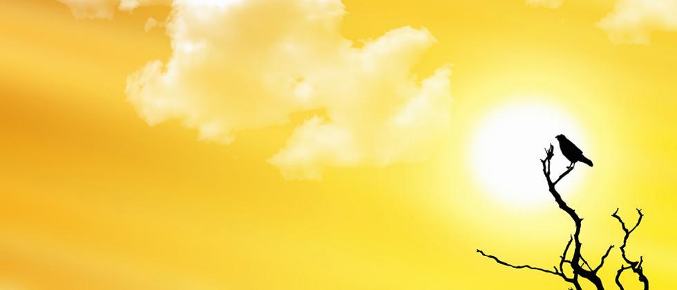 'Heatwave-like weather unusual'