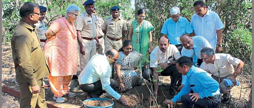 'Sustainable forest mgmt is shared responsibility'
