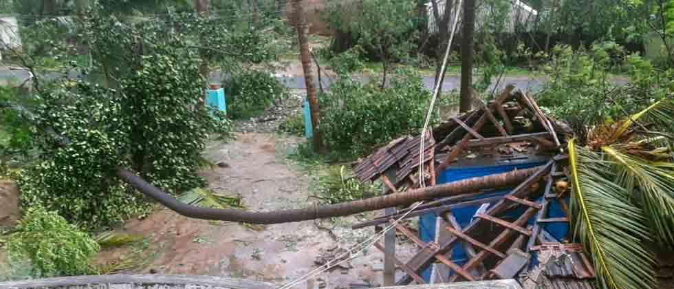 Cyclone 'Gaja' claims 11 lives in TN, says CM