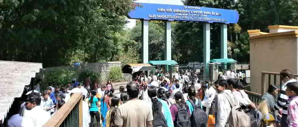 PMC to give zoo's land for flyover