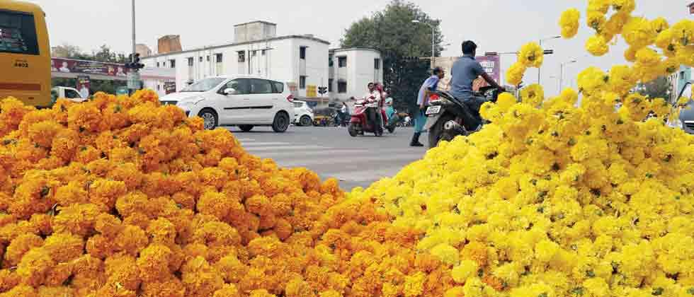 Marigold and gold are a hit this Diwali