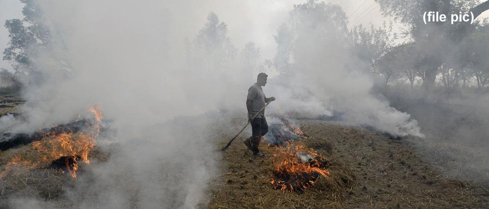 Pollution alert: Anti-stubble burning moves go up in smoke in Punjab, Haryana