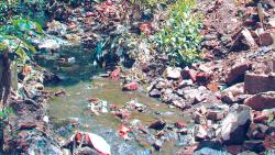 Signature campaign to save natural springs in Bavdhan