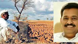 Loan waiver reaches just 1% farmers