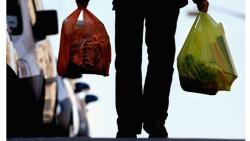 PMC stops action against plastic bags use