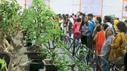 Sharad Pawar inaugurates Bonsai Namaste expo