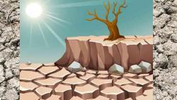 22% less rain in Marathwada