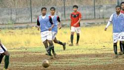 Golden Feather defeats KMPL