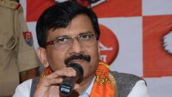 Sanjay Raut appointed leader of Sena MPs of both Houses of Parliament