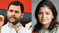 Rahul should apologise to SC