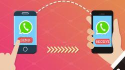 WhatsApp limits forwarding msgs to check rumours, fake news