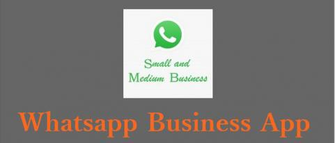 download business whatsapp app for android