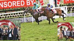 Sultan Suleiman wins SA Poonawalla Million