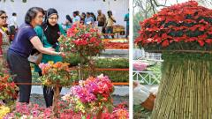 Huge crowds at Empress Garden flower expo
