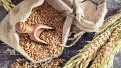 VSA will hold 'Grains Festival' to provide natural farm fresh produce