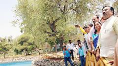 33 cr trees to be planted in State: Mungantiwar