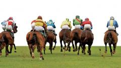 Poonawalla-owned Ruffina wins in record timing