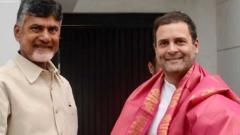 LokSabha 2019: TDP chief Naidu meets Rahul; discusses firming up anti-BJP front
