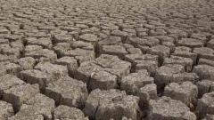 Maharashtra launches website, app to analyse drought situation