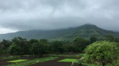 Monsoon has hit Kerala coast: IMD