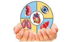 Need for more awareness about organ donation