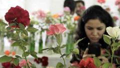 100th rose exhibition takes off in city today