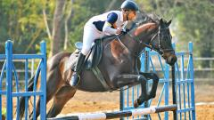 Ceddar Equestrian Centre impresses at MEG 2019