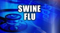 41 swine flu deaths reported by PMC since January 1