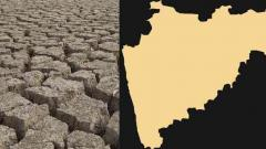 Central delegation to assess crop damage in Maha