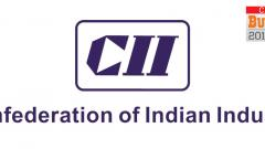 CII members give mixed reactions to Budget 2019