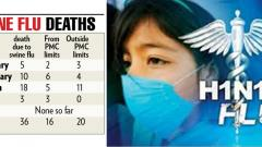 Swine flu claims 36 this year so far