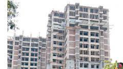 Dussehra brings cheer to real estate market
