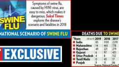 At 85 in Jan, swine flu deaths still remain high